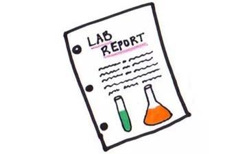 Lab Report格式