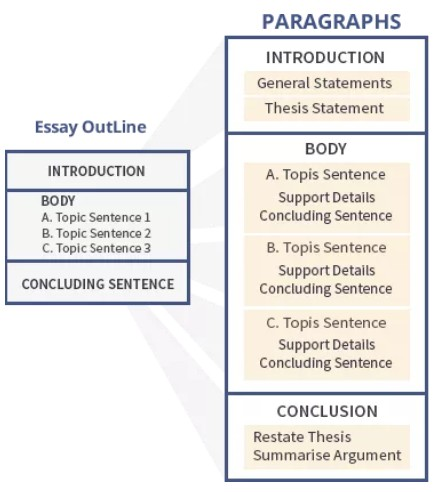 Essay主要结构