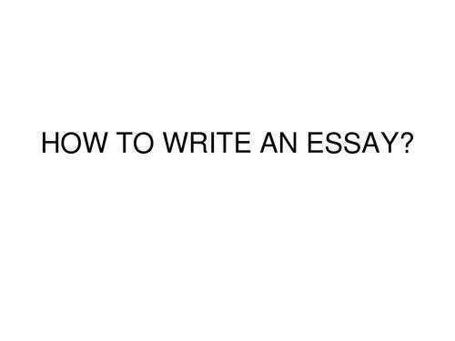 Essay怎么写