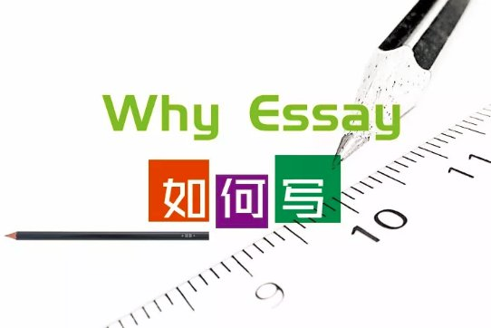 Why School Essay怎么写