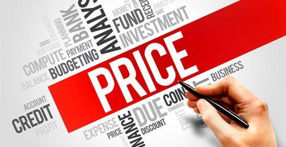 定价策略(Pricing Strategy)怎么写?
