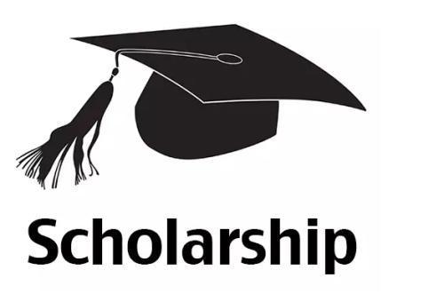 Scholarship(奖学金)