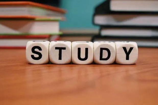商业研究(Business studies)