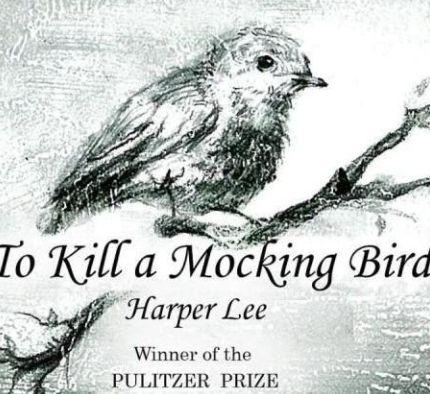 《杀死一只知更鸟》书面封皮