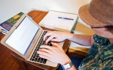 Assignment代写案例-政府会计