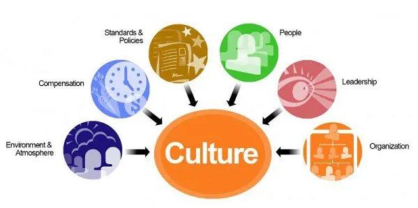 组织文化结构图